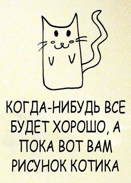 Фотодневник. Рисунок котика.